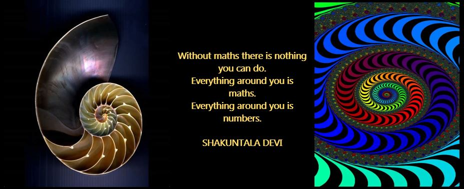 Maths graphic and quote