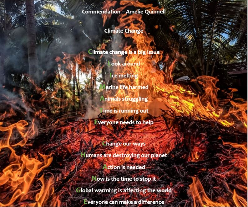Climate Change Poetry - Commendation2